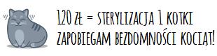 sfinansuję sterylizację za 120 zł, żeby nie rodziły się niechciane kocięta