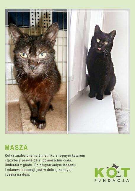 masza