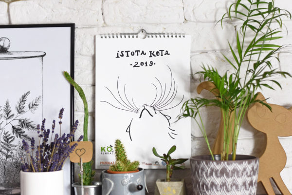Istota kota 2019 – okładka – grafika Iza Turska, fot. Dominika Płuza